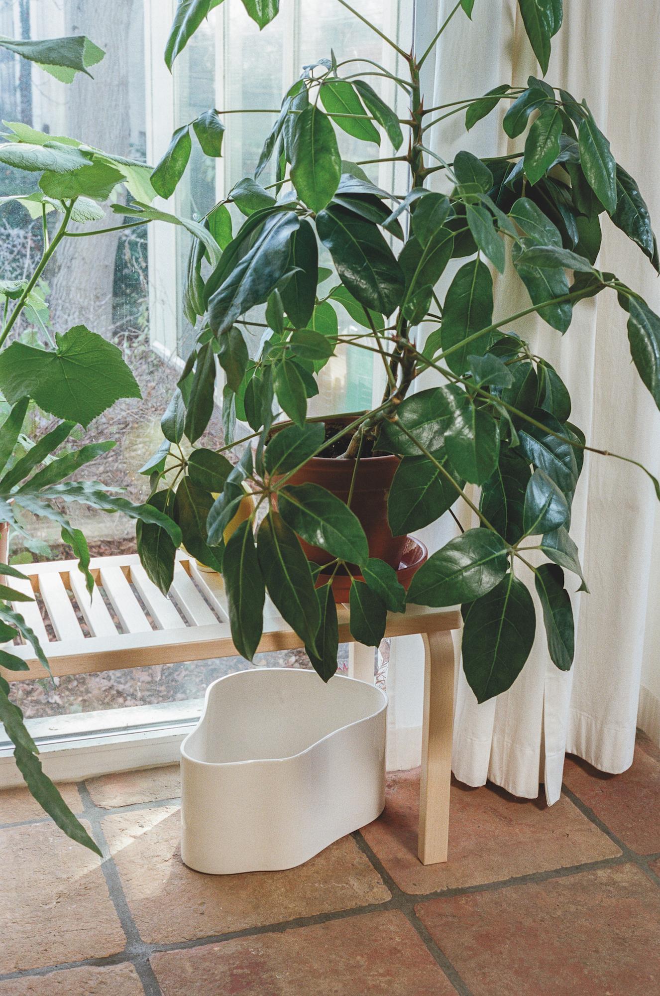 Artek Riihitie Plant Pots Design Aino Aalto